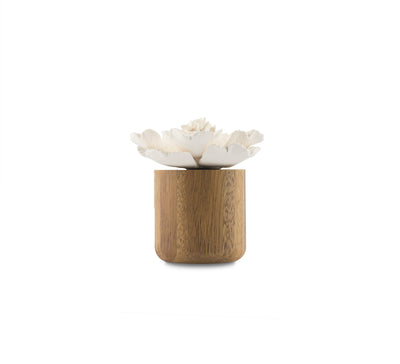 Anemone Flower Scenting Clay Diffuser (Tall Bouquet)