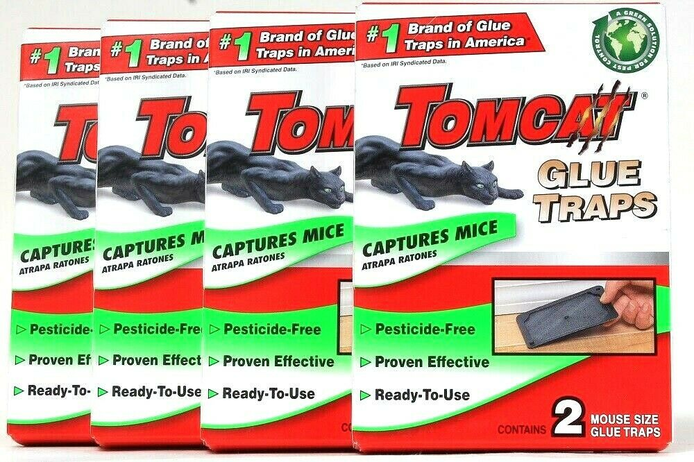 4 Packs Tomcat Pesticide Free Effective Ready To Use 2 Ct Mouse Size Glue Traps