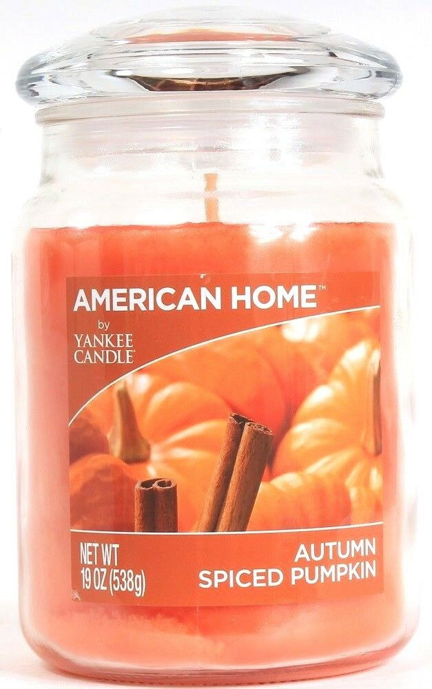1 American Home 19 Oz Single Wick Autumn Spiced Pumpkin Glass Jar Candle