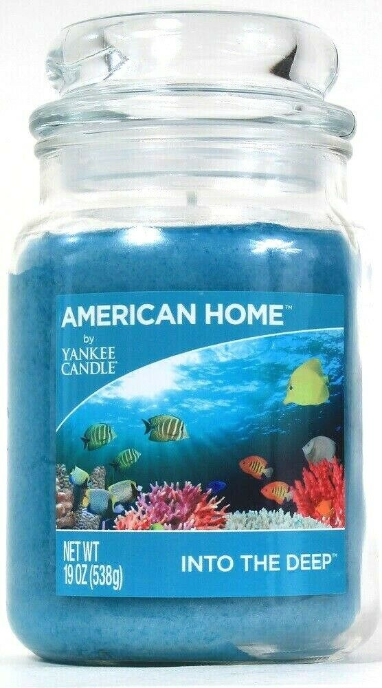 1 American Home By Yankee Candle 19 Oz Into The Deep 1 Wick Glass Jar Candle
