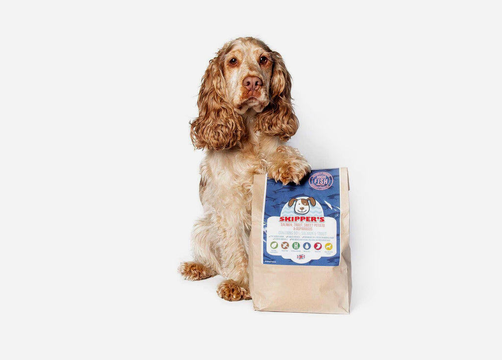 Does Your Dog Eat Grain Free?  A look at Skipper's Grain Free Complete Food!