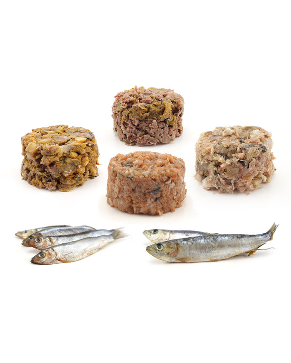 Raw Dog Food Bundle