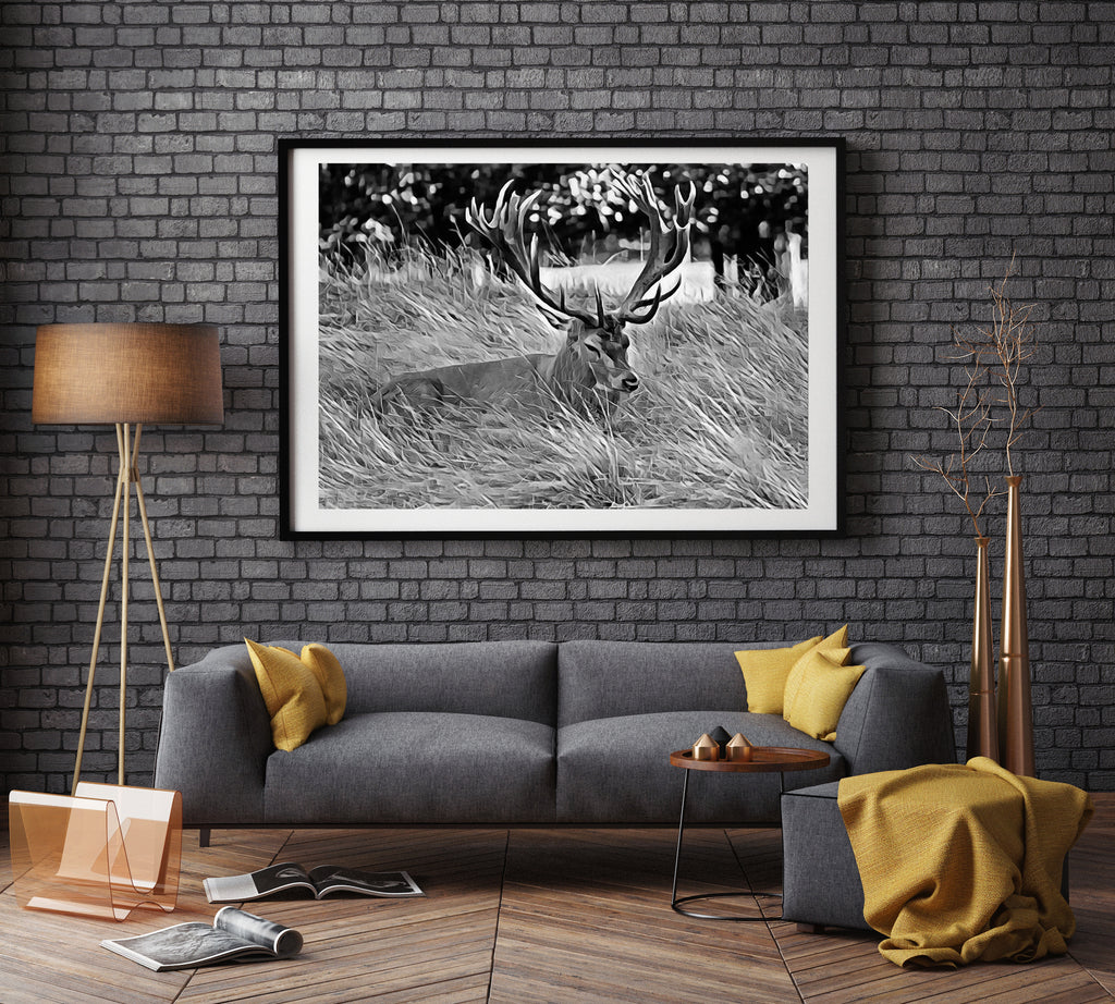 Monochrome Bushy Park Stag - Limited Edition Fine Art Giclée Print (30x40 mounted)
