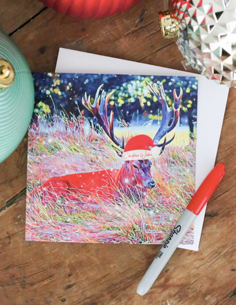 SOLD OUT - Snowy Bushy Park Stag Christmas Card - Free Delivery