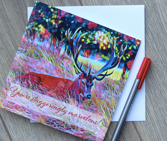 Valentine's Day offer - Bushy Park Stag Fine Art Print 30x40 & FREE Bushy Park Stag Love Card