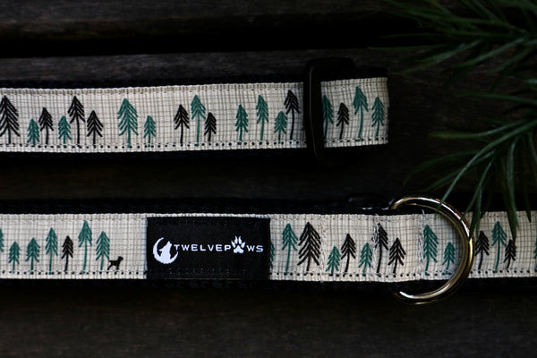 "Little Sapling 3/4"" Collar"