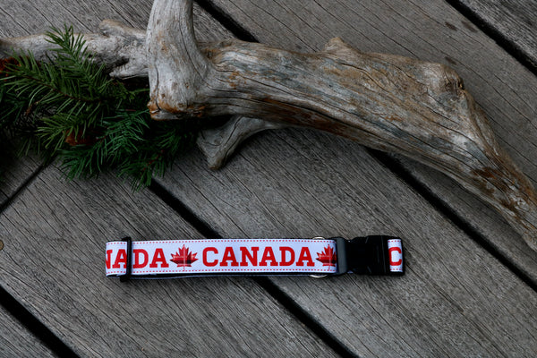 "Canada 1"" Collar (two options)"
