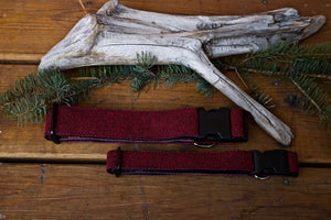 "Classic Red 1"" or 1.5"" Collar"