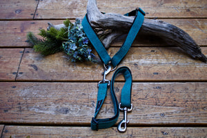 Adjustable Waist Leash (multiple colours)