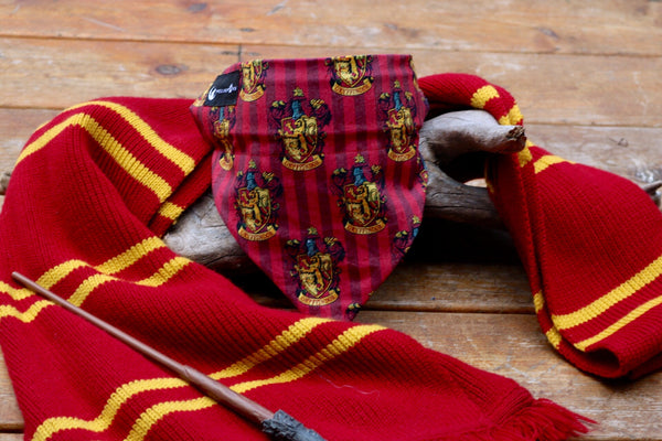 Sorting Hat (4 options - limited sizing available)