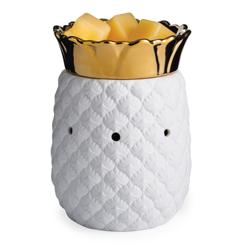 PINEAPPLE TART WARMER