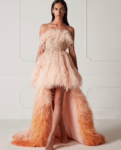Decorated with feathers hi-low A-line gown