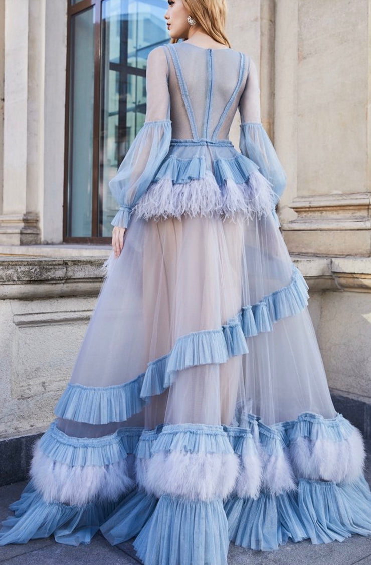 Ostrich Feather-Embellished  Gown