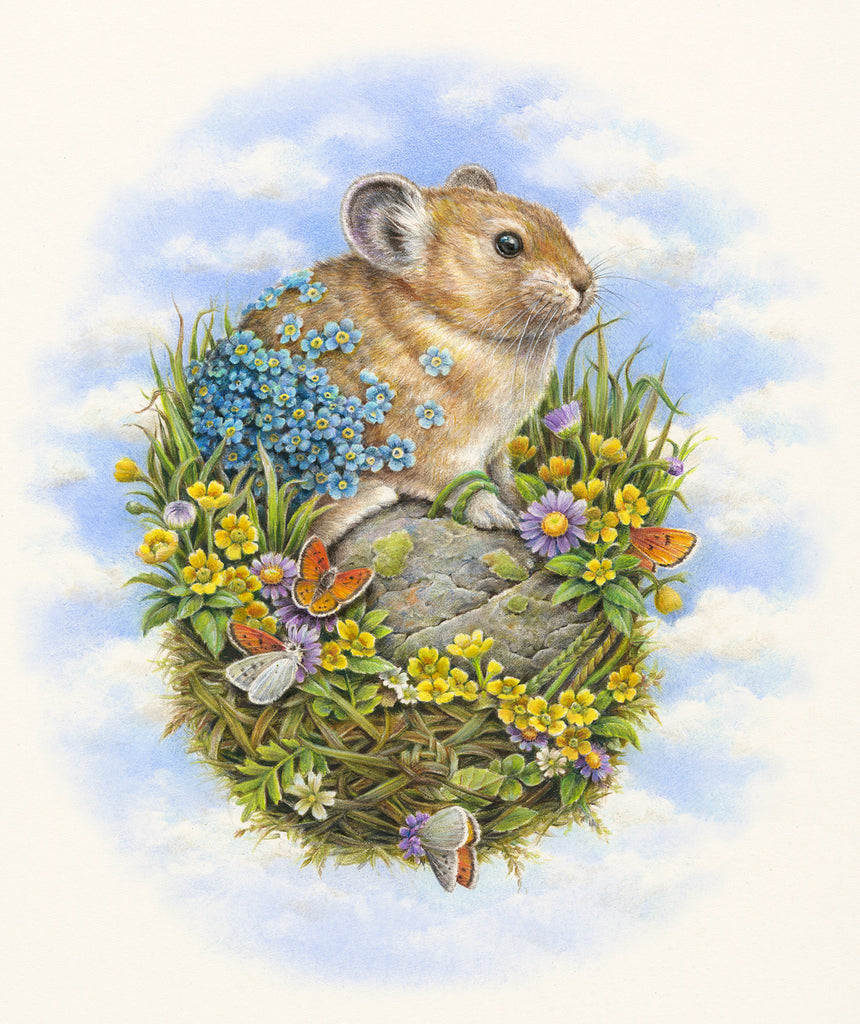 Courtney Brims - 'American Pika'