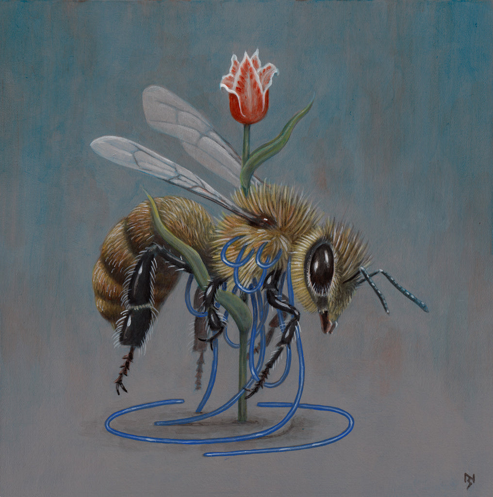 Nick Sheehy - Bee and Flower