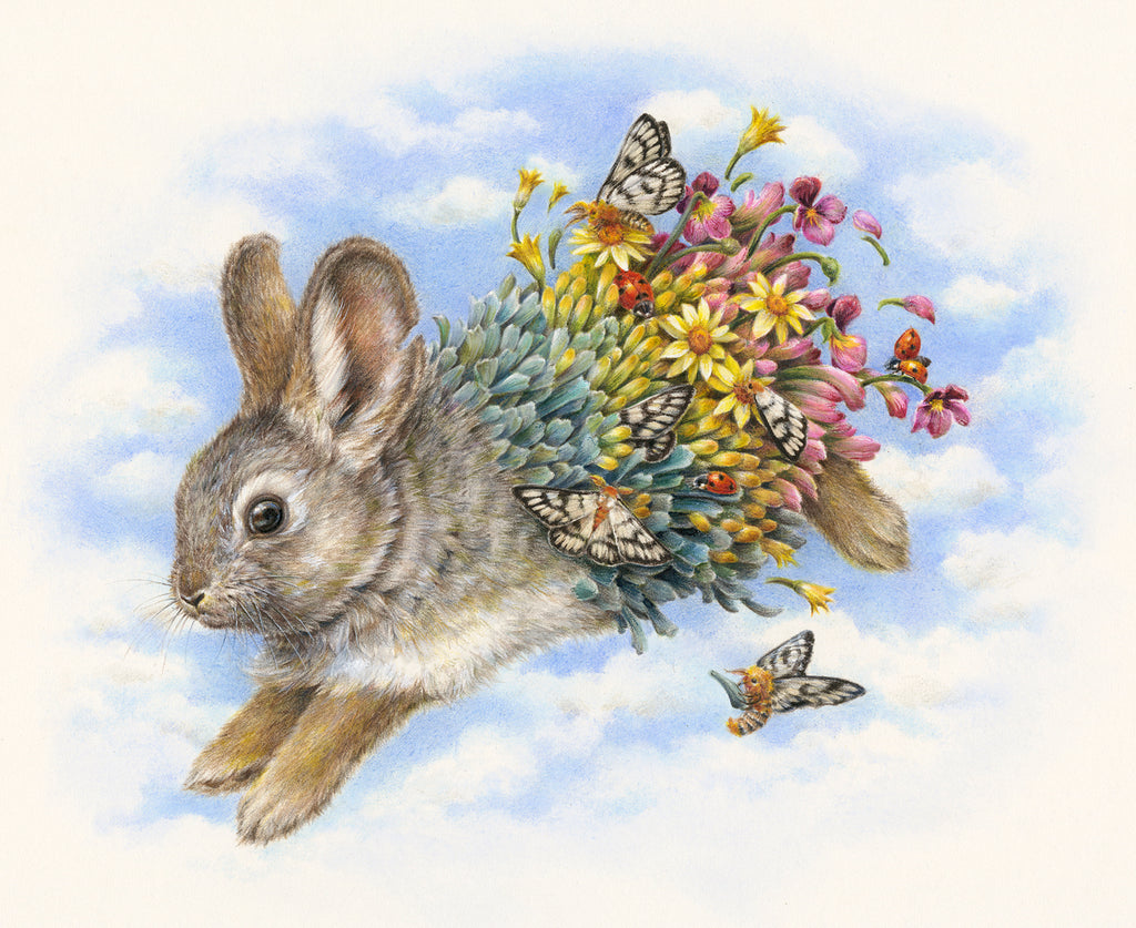 Courtney Brims - 'Columbia Basin Pygmy Rabbit'