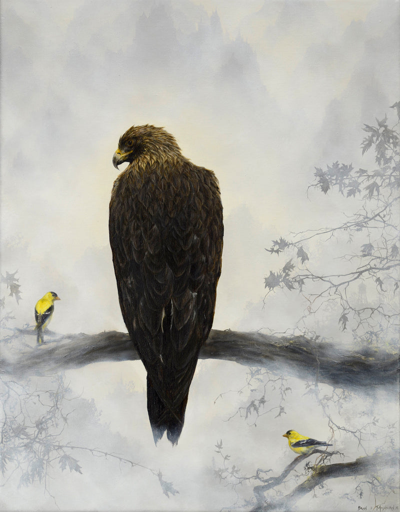 Brian Mashburn - Golden Eagle with Goldfinches