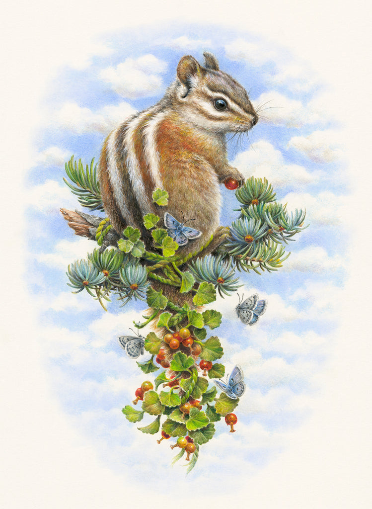 Courtney Brims - 'Palmer's Chipmunk'