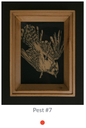 Teagan White - Cyanotypes on Paper   Pest #1 - Pest #16
