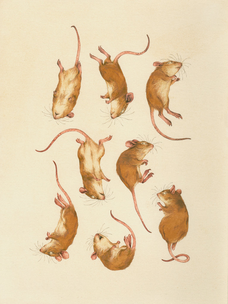 Teagan White - A Considerable Harvest of Mice