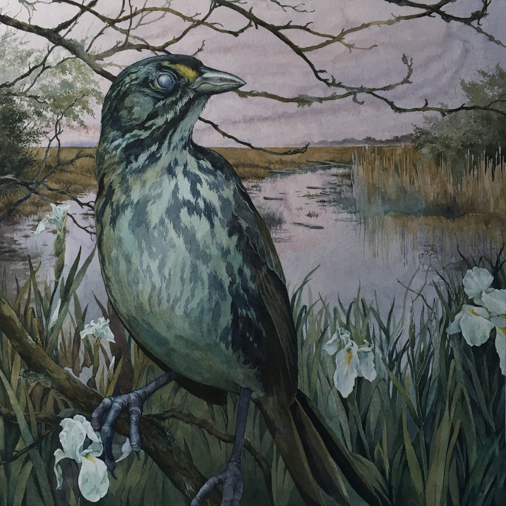 "Lily Seika Jones - ""Cemetery of the Dusky Seaside Sparrow"""