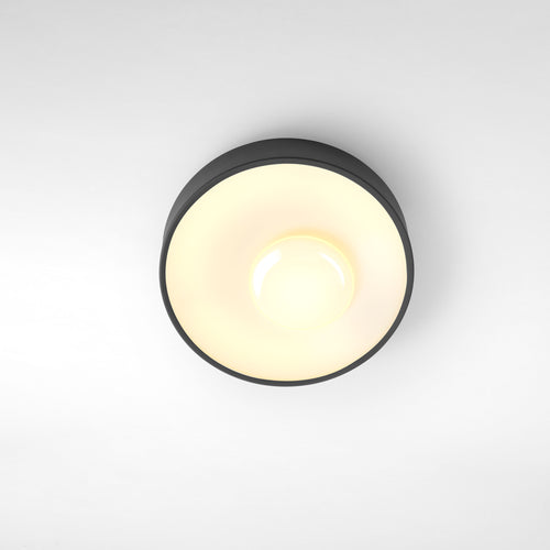 Sun Ceiling & Wall Light