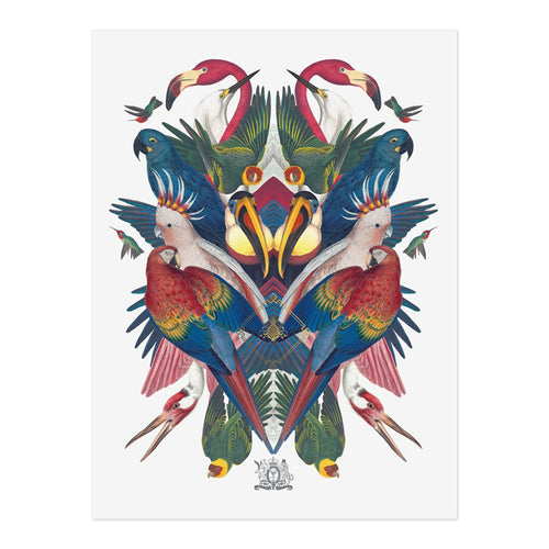 Divine Birds Limited Edition Print