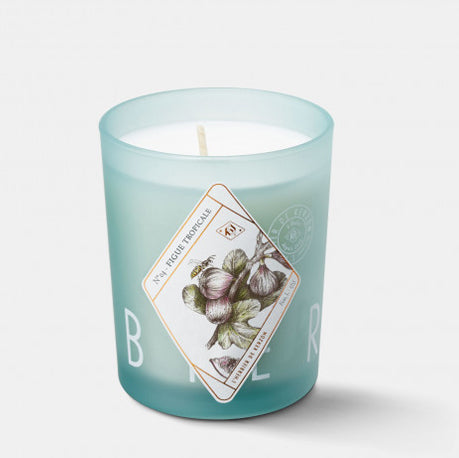 Fragranced Candle Figue Tropicale - Fig & Hay by Kerzon Paris
