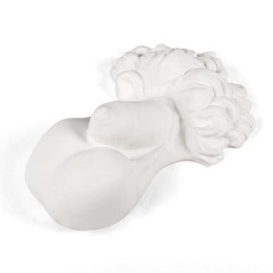 Memorabilia Museum Male Body Part Ornament