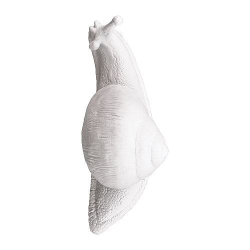 Seletti Slow Snail Wall Hook