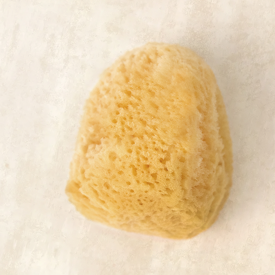 Cosmetic Silk Sea Sponge