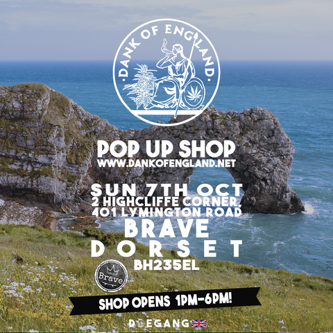 Dank Of England Pop UP Dorset
