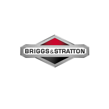 Briggs-Stratton-Kart-Racing-Engines