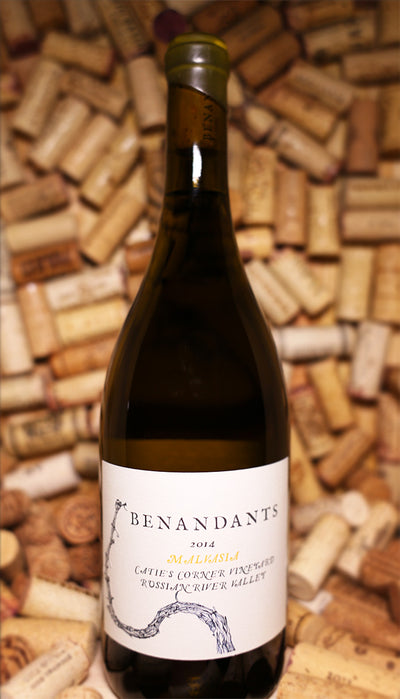Arbe Garbe Benandants Malvasia Bianca Russian River 2015 - The Corkery Wine & Spirits