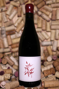 Arnot-Roberts Syrah Griffin's Lair Vineyard Sonoma Coast 2014 - The Corkery Wine & Spirits