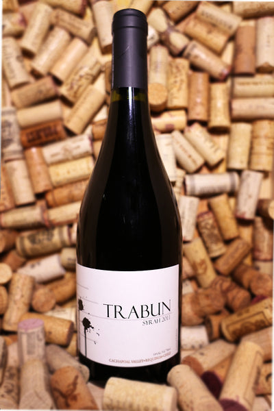 Trabun Syrah, Cachapoal Valley, Chile 2011 - The Corkery Wine & Spirits
