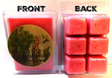 Peppermint 3.2 Ounce Pack of Soy Wax Tarts (6 Cubes Per Pack) - Scent Brick, Wickless Candle - mels-candles-more