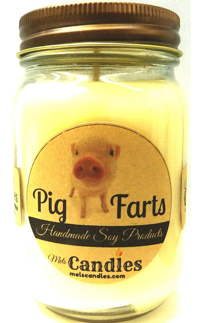 Pig Farts - 16 Ounce Country Jar 100% Soy Candle - Handmade in USA - Smells Like Bacon Bits - mels-candles-more