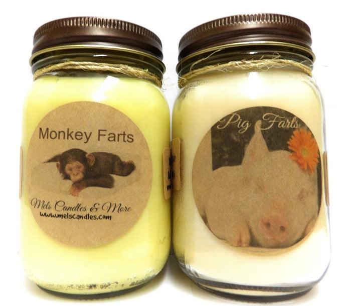 Monkey Farts and Pig Farts- Set of Two 16oz Country Jar All Natural Soy Candles - mels-candles-more