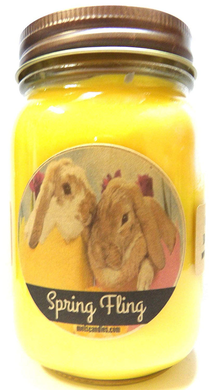 Spring Fling (Daffodil Aroma) Handmade 16oz Country Jar All Natural Soy Candle, - mels-candles-more