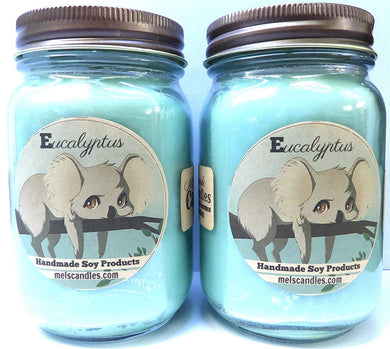 Combo Deal Set of TWO - Eucalyptus -16 Ounce Country Jar Handmade 100% Soy Candles - mels-candles-more