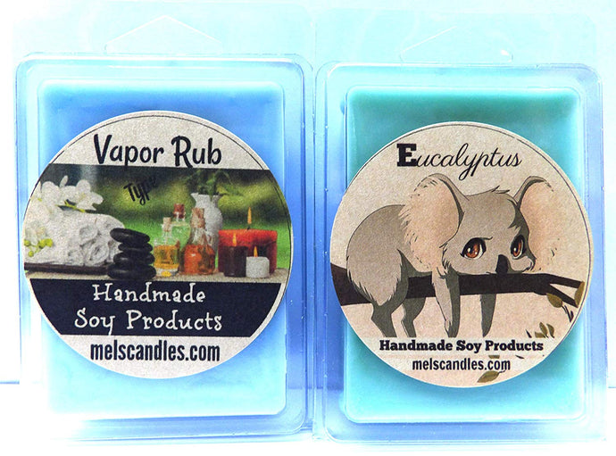 Combo Eucalyptus and Vapor Type 3.4 Ounce Pack of Soy Wax Tarts - Mels Wickless Melts. Scent Brick - mels-candles-more