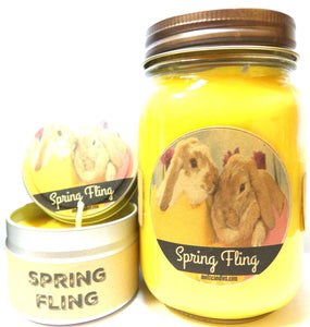 COMBO SET SPRING FLING (Daffodil Aroma) - 16oz Country Jar Soy Candle and 4oz Soy Candle Tin - mels-candles-more