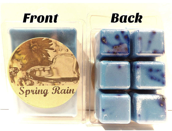 Spring Rain 3.2 Ounce Pack of Soy Wax Tarts - Scent Brick, Wickless Candle - mels-candles-more