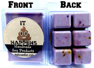 It Happens Novelty 3.2oz Pack of Soy Wax Tarts (6 Cubes Per Pack) Mels Melts, Gross Smells Like Poop - mels-candles-more