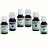 Women Personal Care Body Oil Set of 6 Original Essential Oil