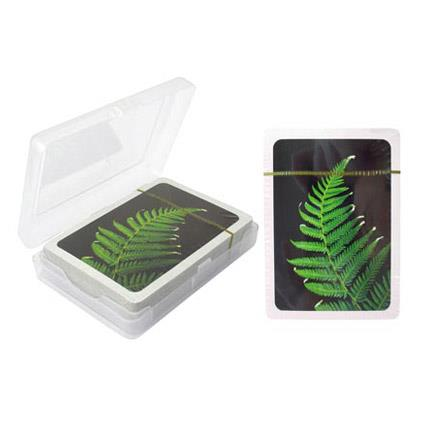Fern Playing Cards