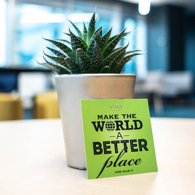 Viva Naturals - Make the world a better place