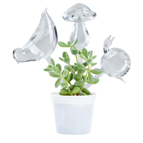 Self-Watering Plant Glass Bulbs ( 2 Pack)