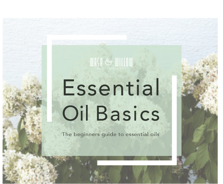 Essential Oil Basics- The Beginners Guide to Essential Oils